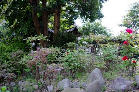 Mantokuji16