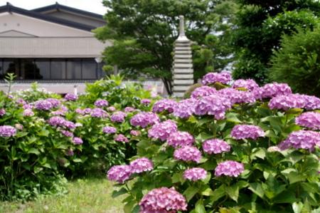 Hokusei03