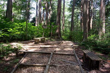 Akazawa12