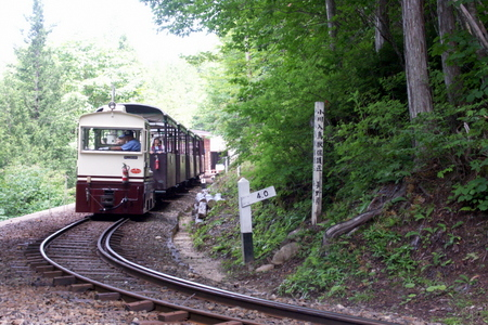 Akazawa17