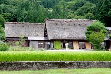 Shirakawago25