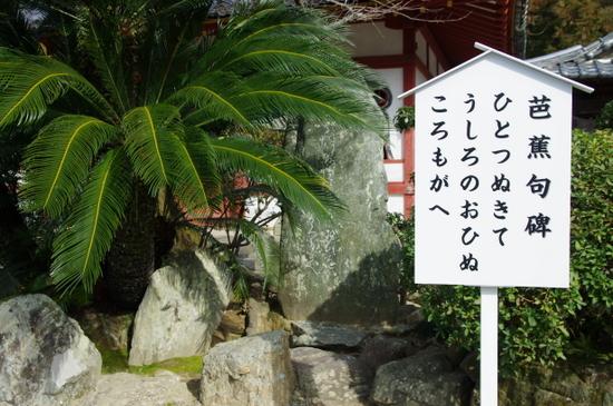 Kokawa16