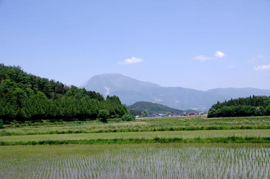 Yamamuro01