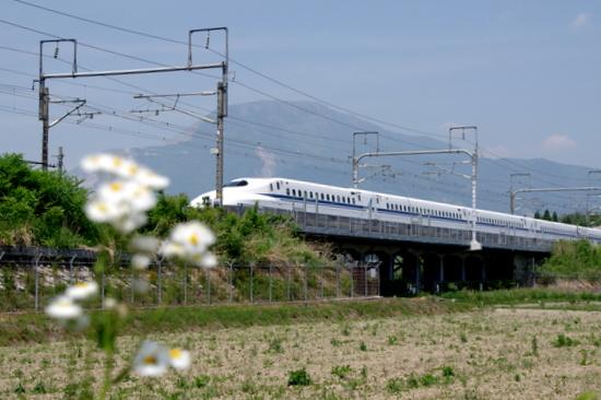 Yamamuro16