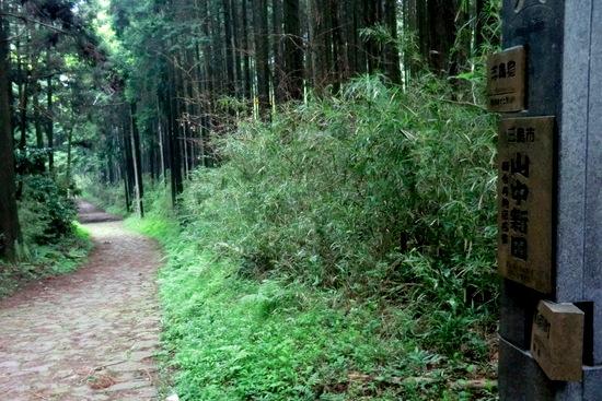 Hakonew10