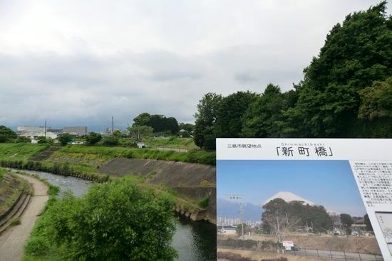 Hakonew21