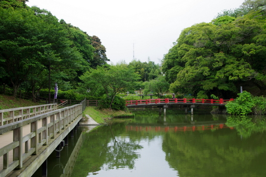 Kameyama02