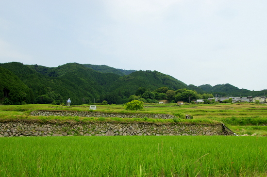 Sakamoto14