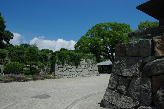 Akashijo19