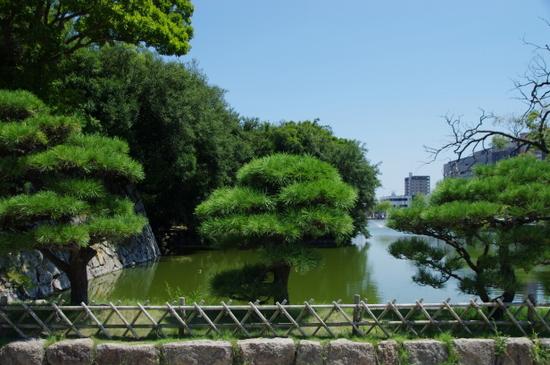 Akashijo20