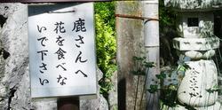 Kokuzo012