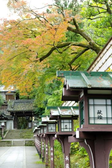 Maruyama02