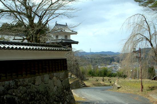 Iwamurab20