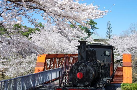 Meijimuras113