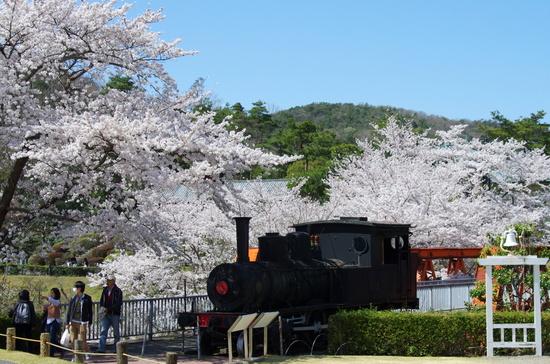 Meijimuras212