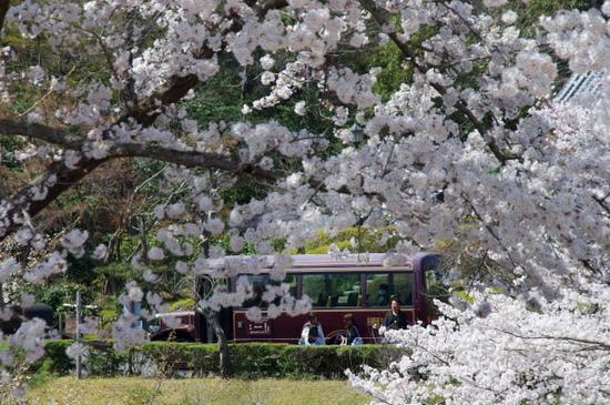 Meijimuras214