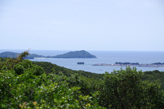 Yokoyamah11
