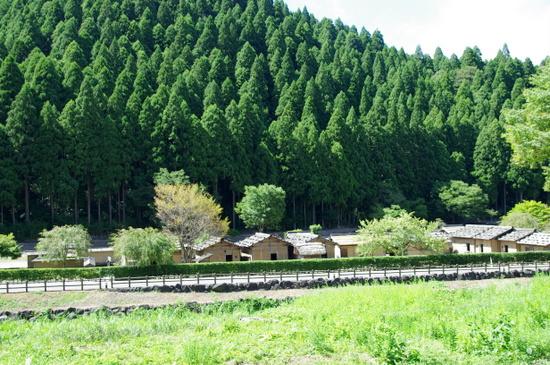Asakurai15
