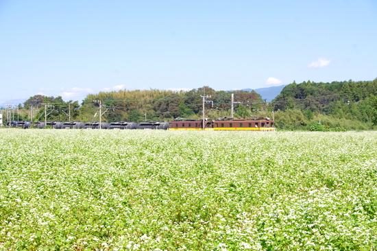 Nyugawa12