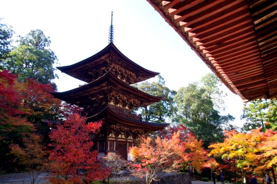 Saimyouji11