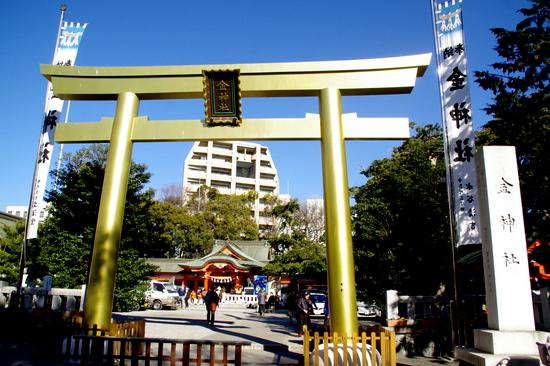 Gifu301