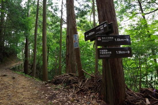 Matsuoyama03
