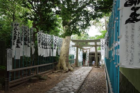 Takeshima08