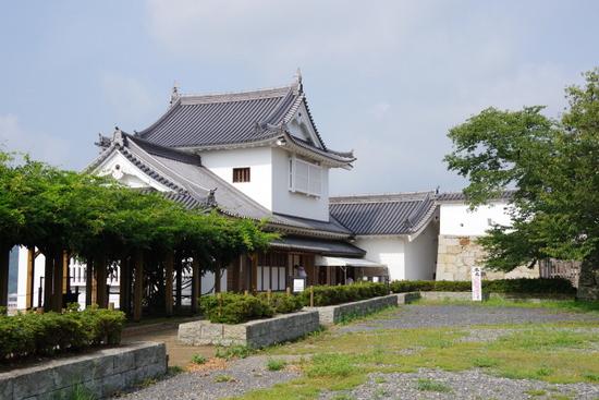 Tsuyamac10