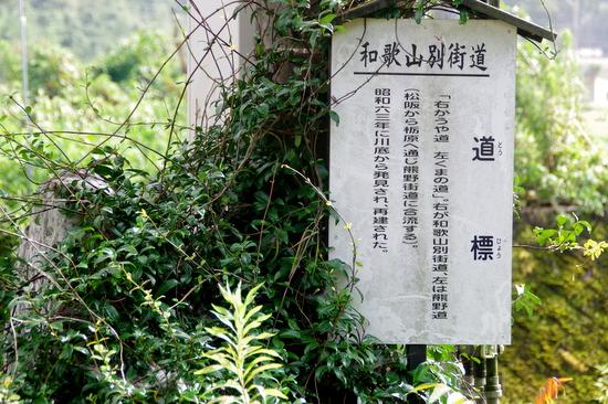 Wakayamab152