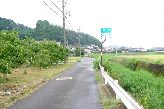 Wakayamab17