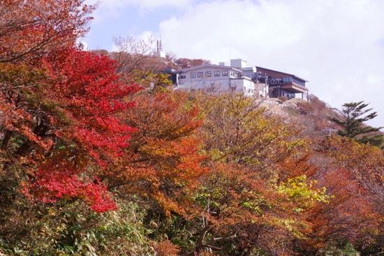 Gozaishoa13