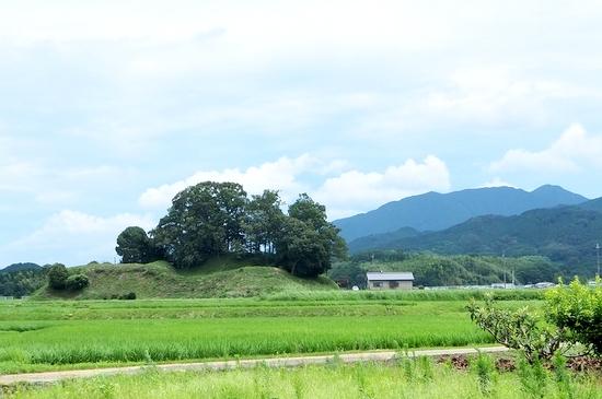 Taishimiti210