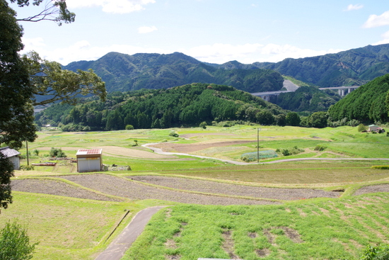 Akamotok06