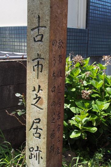 Furuichik08