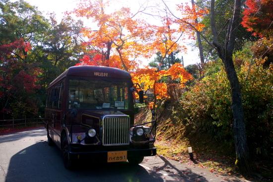 Meijimuraa2010