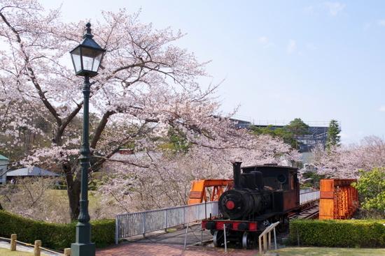 Meijimuraf11