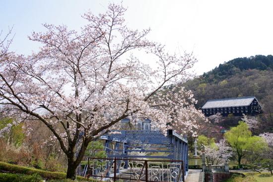 Meijimuraf15