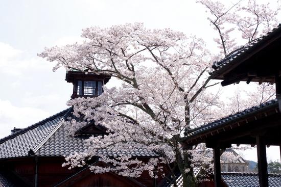 Meijimurao02