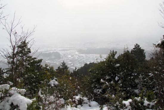 Tadoyuki03