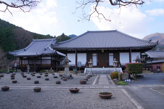 Taimaoku02