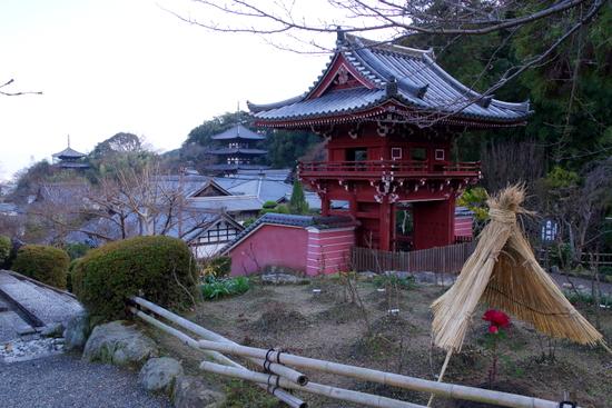 Taimaoku12