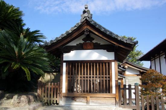 Taishimici02