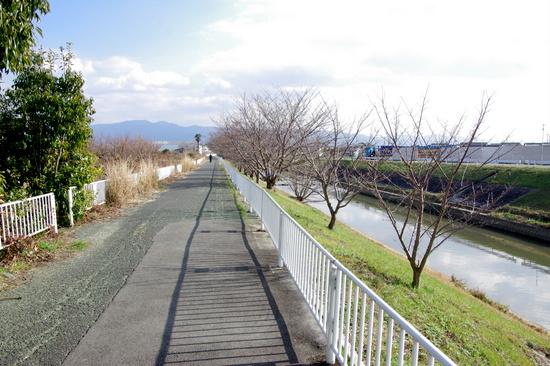 Taishimici18
