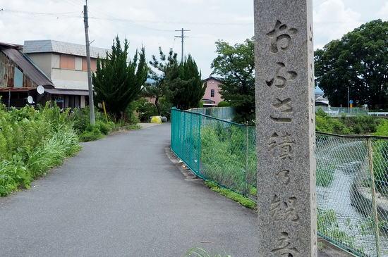 Taishimiti202